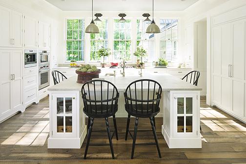2015 Charlottesville Idea House, kitchen overall